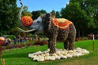 Weltgrößte Kürbisausstellung in Ludwigsburg im Blühenden Barock. Thema 2016: Manege frei im Kürbis-Zirkus!