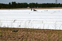 Gemüsespargel oder Gemeiner Spargel (Asparagus officinalis)Weiß- und Grünspargel.Spargel Spargelfelder Spargelzeit März bis 24 Juni Johannis Gerauer Spargeltage