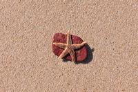 Sylt, Insel Sonne Sand und Strand im Norden von Deutschland