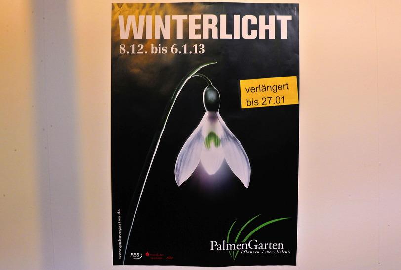 Winterlicht im Palmengarten Frankfurt Dezember 2012
